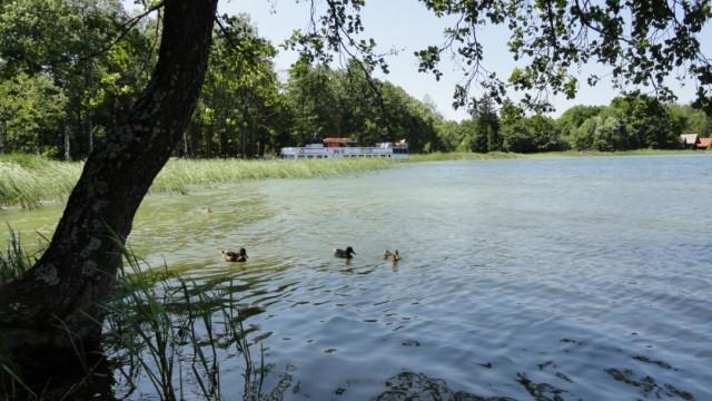 17 Augustowskie jezioro Białe