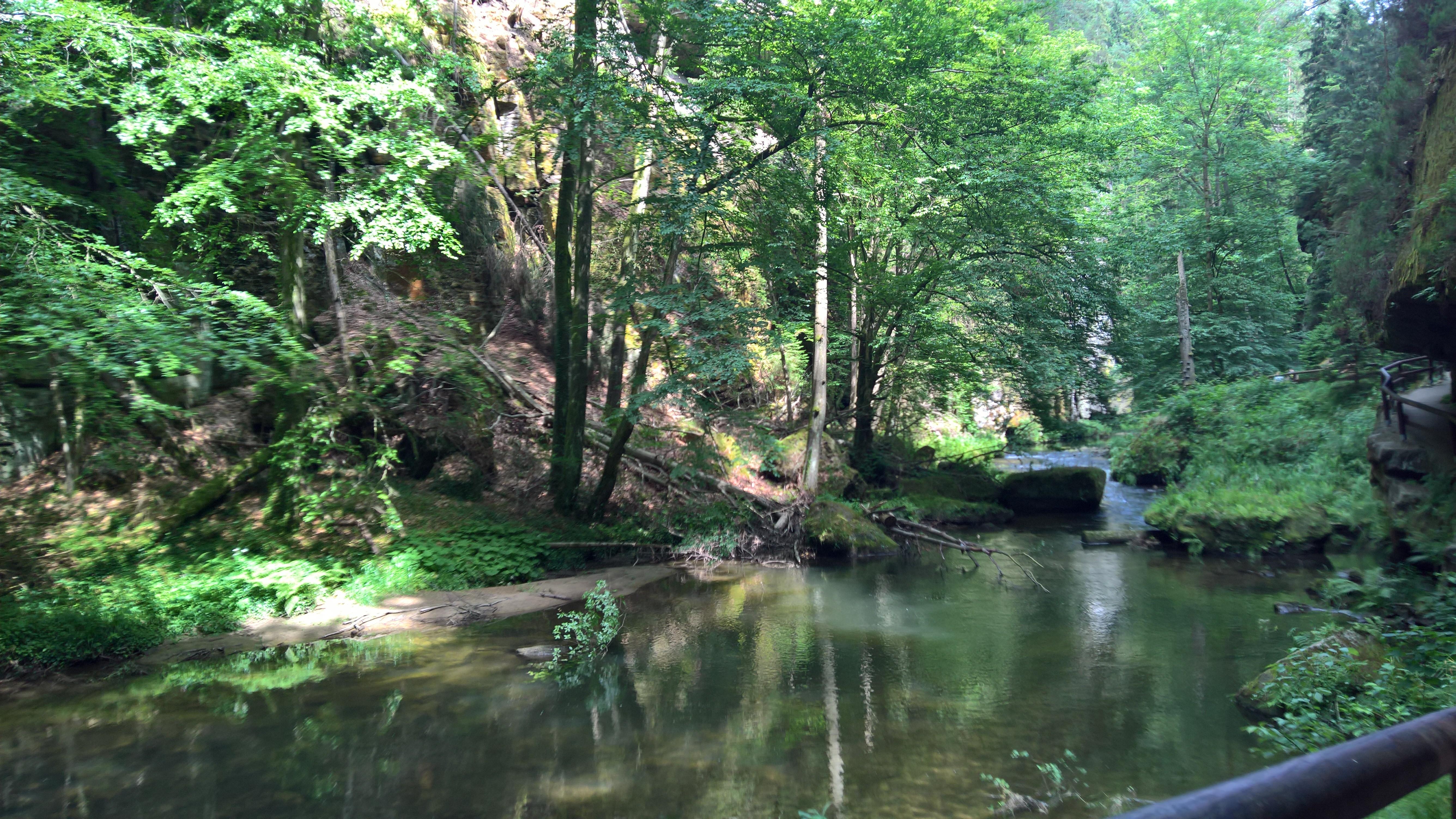 Spływ doliną Kamienicy